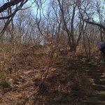 mas del sendero hacia la base del cerro