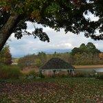 Gazebo on grounds overlooking Lake