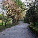 Avenida parque