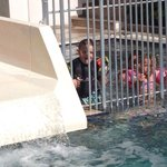 Pic of the kids in little pool