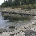 Great view from cottage of the rocky coast of Maine