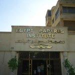 Egypt Papyrus Institute
