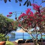 Amazing poll with beautiful garden from Bulgari Hotel Uluwatu