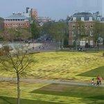 Vista desde el Van Gogh Museum