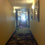 Foto de Holiday Inn Express Youngstown North (Warren/Niles)