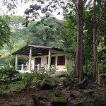beach house at Coconut Grove