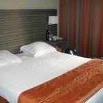 Billede af Hotel Castel