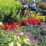 We loved the flower displays along The Embarcadero