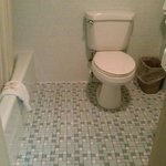 The toilet seemed new and was clean. The shower had consistent hot water and pressure. It was ou
