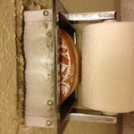Toilet holder