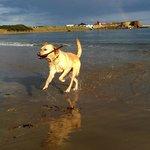 Beach at Beadnell