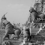 jain temple - roof view