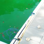 Lovely pool October 2014 - maintenance is poor here 100%