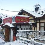 Dalziel - Winter Feb 2014