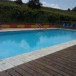 piscina immersa nelle vigne, che pace!