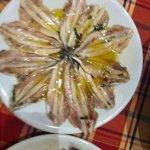 anchove
