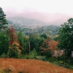 Fall View from Rustic Cabin