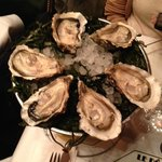 best oysters ever!!!