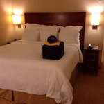 Nice Room (Room #654) - San Ramon Marriott