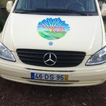 Birding in a Mercedes Benz - ONLY with Amazing Tours!