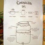 How to cook Kombucha