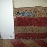 Comfort Inn - Pensacola / N Davis Hwy Foto