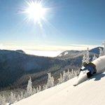 Wide open terrain, perfect powder and sun....