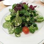 Salat mit Super-Dressing