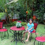 Sit-out/Garden
