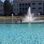 Nice looking pools