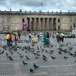 O Capitolio decorado pelos pombos da praça Bolivar