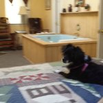 Jacuzzie tub and Pet friendly Dixie