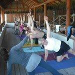 Yoga to your villa/hotel/condo, please email info@yogavallarta.com