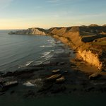 View from Black Reef looking towards Cape Kidnappers