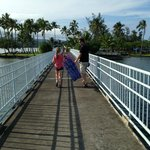 Bridge to Coconut Island