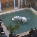 A hippo filling the pool!