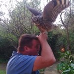 Owl with Martin
