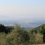 ภาพถ่ายของ Le Polle di Meletro