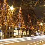 Christmas Notre Dame