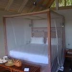 Large bed with netting