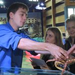 Getting up close to the crabs was a big highlight for some of the students