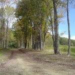 On-site walking trails