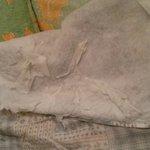Le couvre-lit est en piteux état