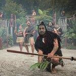 Village maori de Tamaki