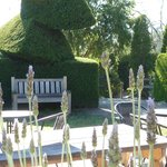 Relax in our beautiful gardens