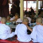 hungry Novice monks