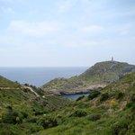 Balearic Shearwater Tours - Private Tour Foto