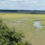 Water and Marsh-Beautiful View