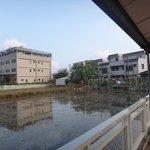 Outside view rice plantation.