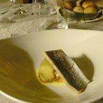 erster Gang im Fischmenü - unbeschreiblich: Textur, Geschmack und Zubereitung 1a!